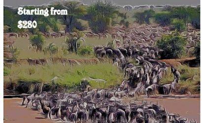 Masai Mara Joining Group
